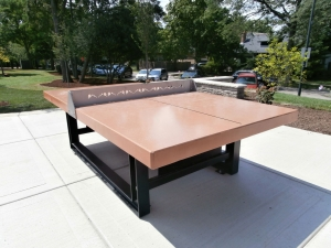 Outdoor ping pong/tennis table